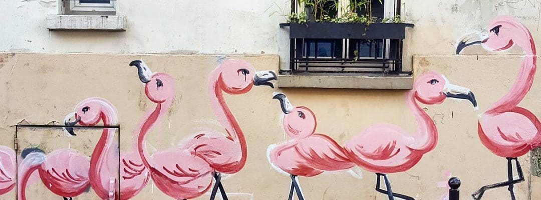 Les Flamants Roses de Montmartre – Paris