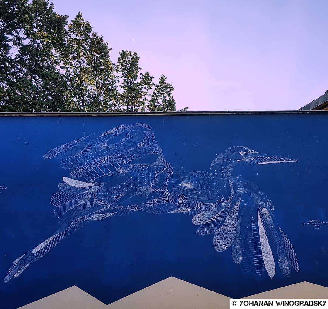 Street art a Paris de Philippe Baudelocque oiseau butte aux cailles