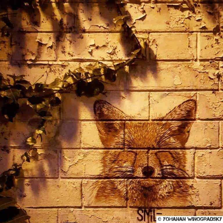 streetart paris par smile boulder renard à la butte aux cailles