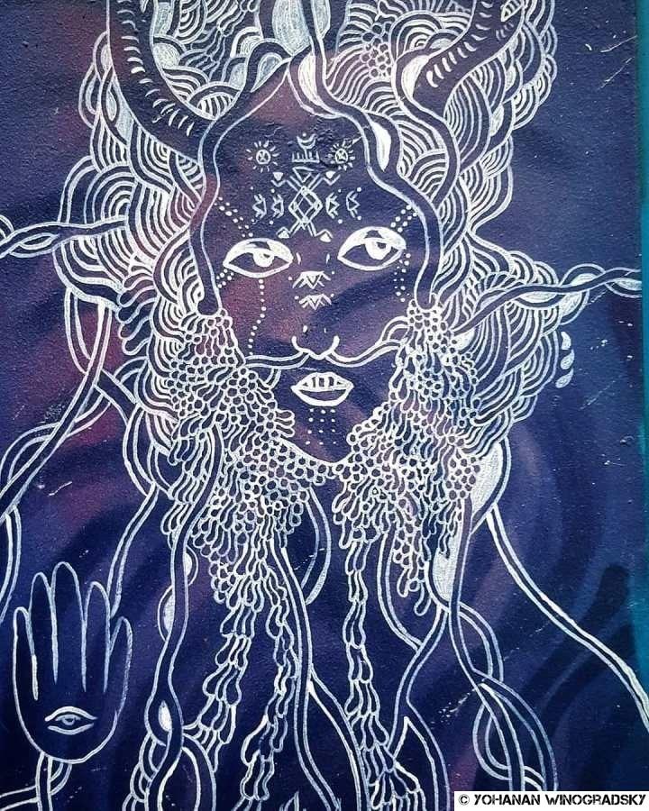 """street art par claire courdavault, citation de """"sapiens"""" de yuval noah harari"""