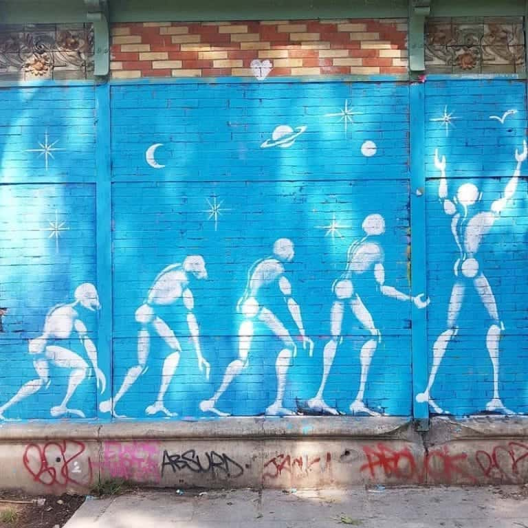 Touche Pas à Mon Darwinisme – Streetart par Jérôme Mesnager, Paris