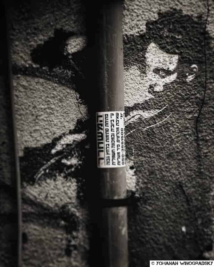 street art tel aviv pochoir d un violoniste