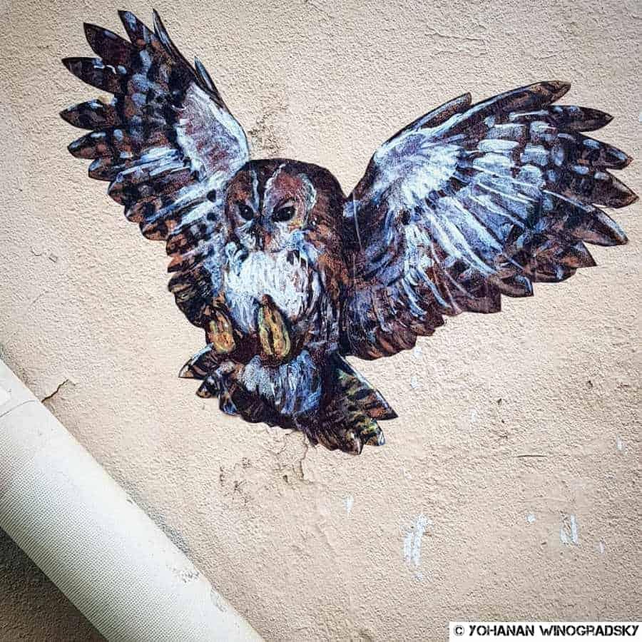 street art par nadege dauvergne pour son projet exodus, la chouette de la rue de la folie mericourt